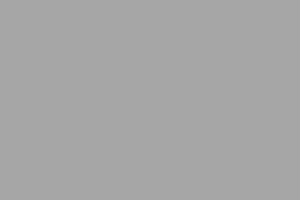 Avn.logo.grey