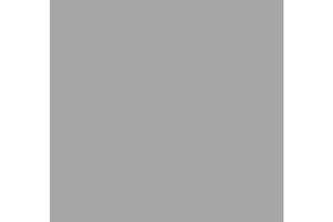 Hornet.logo.grey