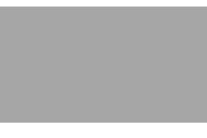 Pinknews.logo.grey