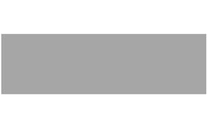 Salon.logo.grey